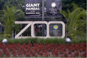 http://dccrimestories.com/tag/national-zoo/