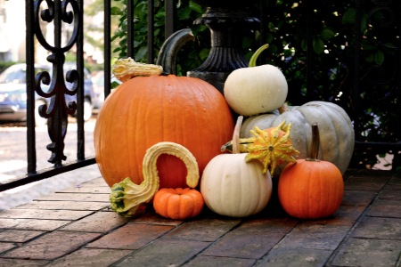 fall-bucket-list_roberts03